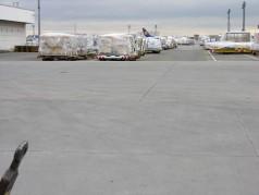 2011_Lufthansa-Cargo-FRAPORT